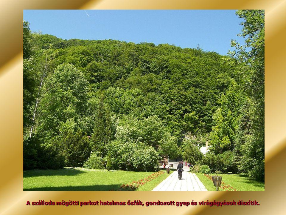 A szálloda mögötti parkot hatalmas ősfák, gondozott gyep és virágágyások díszítik.