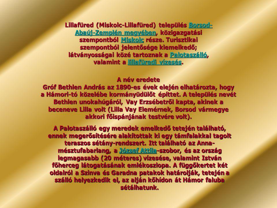 Lillafüred (Miskolc-Lillafüred) település Borsod-Abaúj-Zemplén megyében, közigazgatási szempontból Miskolc része. Turisztikai szempontból jelentősége kiemelkedő; látványosságai közé tartoznak a Palotaszálló, valamint a lillafüredi vízesés.