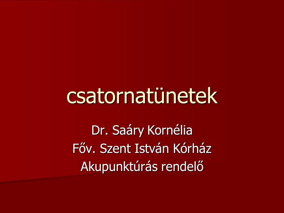 Dr. Saáry Kornélia Főv. Szent István Kórház Akupunktúrás rendelő