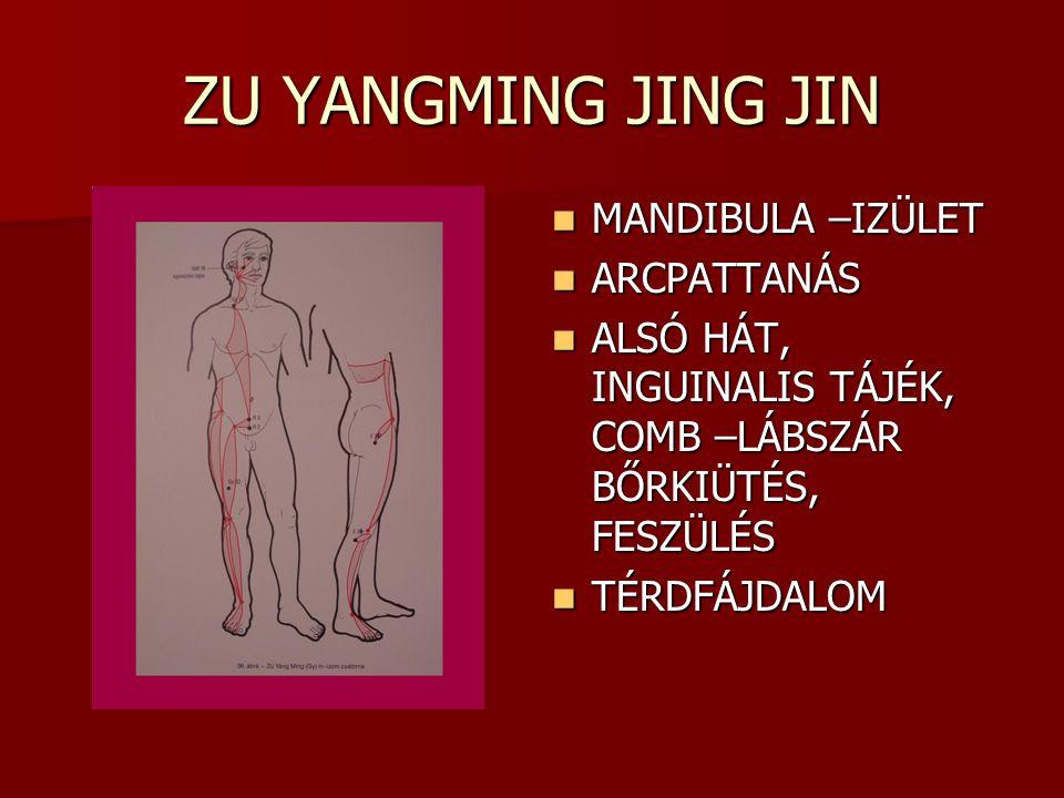 ZU YANGMING JING JIN MANDIBULA –IZÜLET ARCPATTANÁS