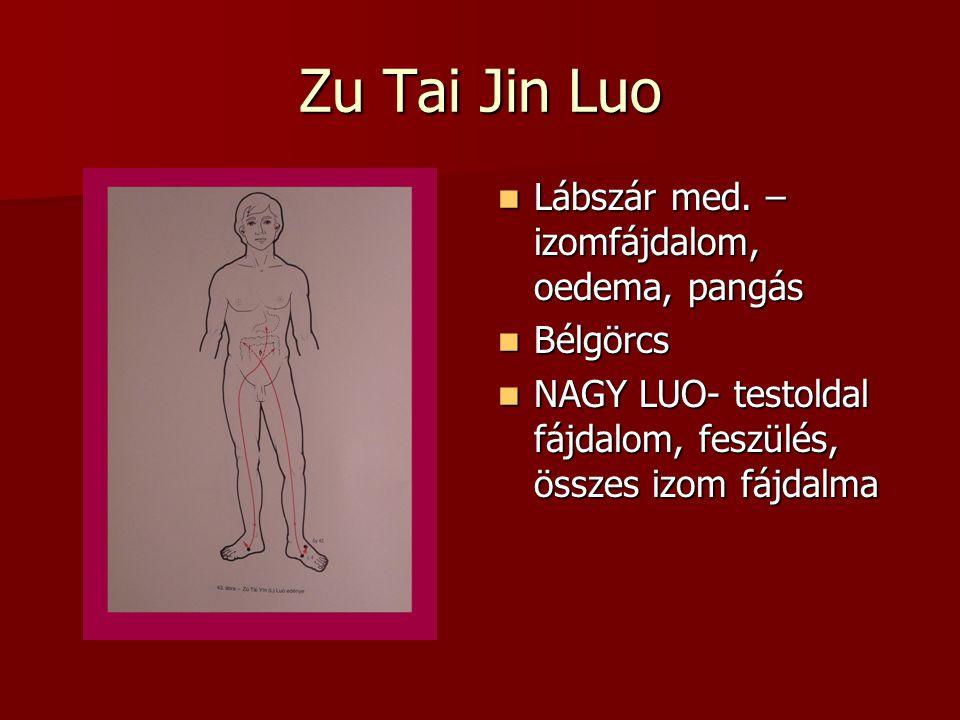 Zu Tai Jin Luo Lábszár med. –izomfájdalom, oedema, pangás Bélgörcs