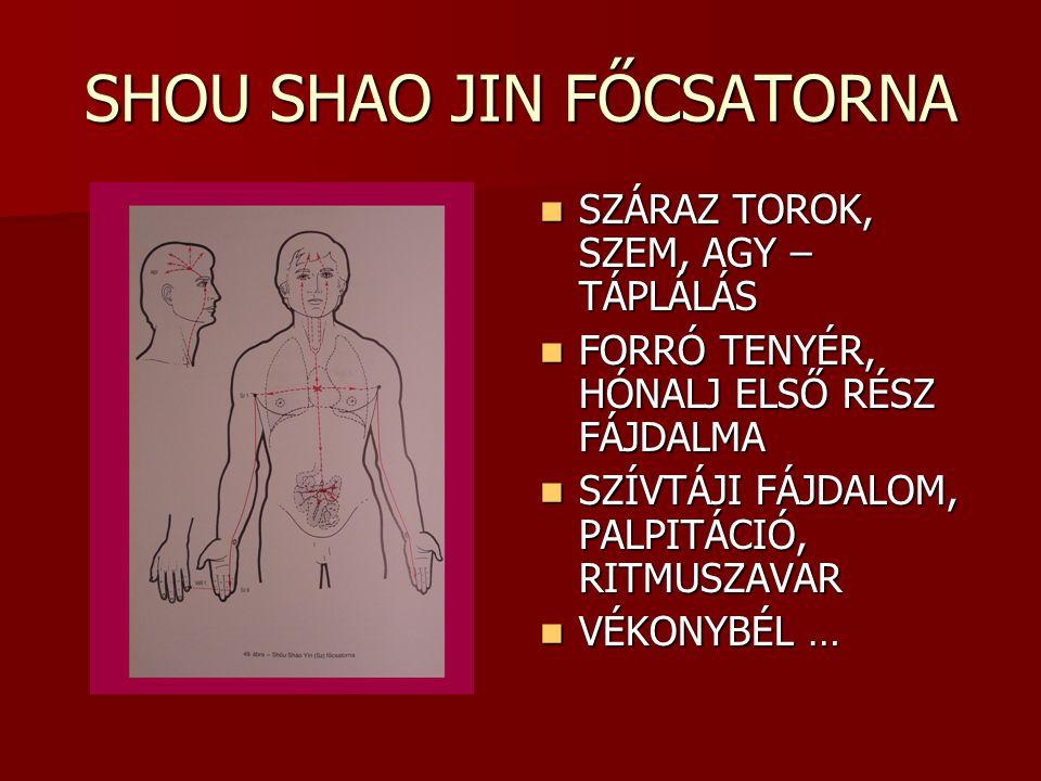 SHOU SHAO JIN FŐCSATORNA