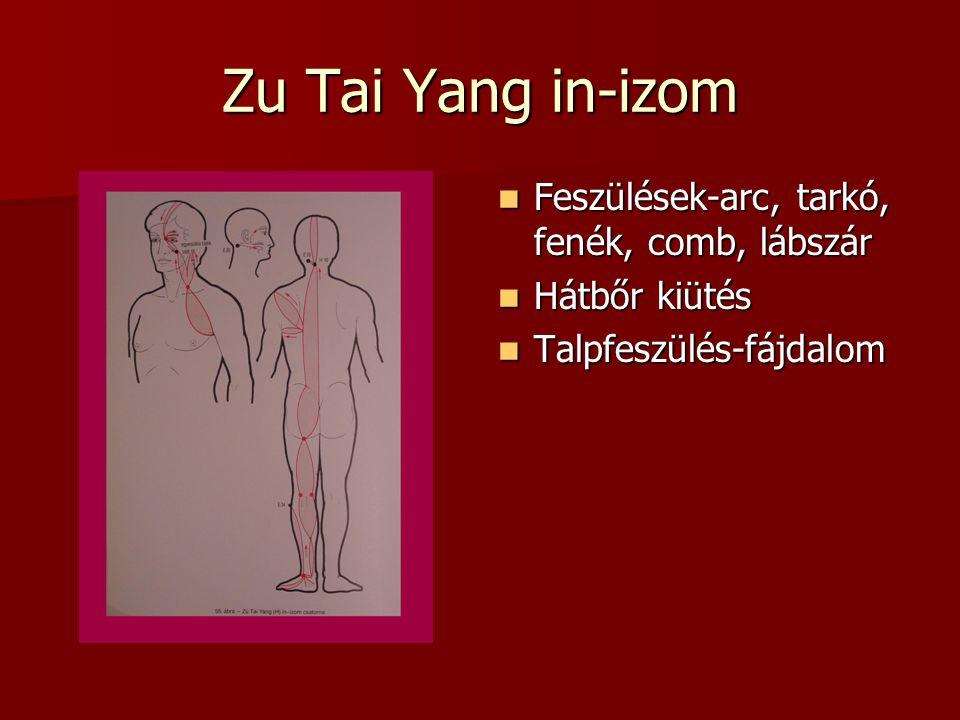 Zu Tai Yang in-izom Feszülések-arc, tarkó, fenék, comb, lábszár
