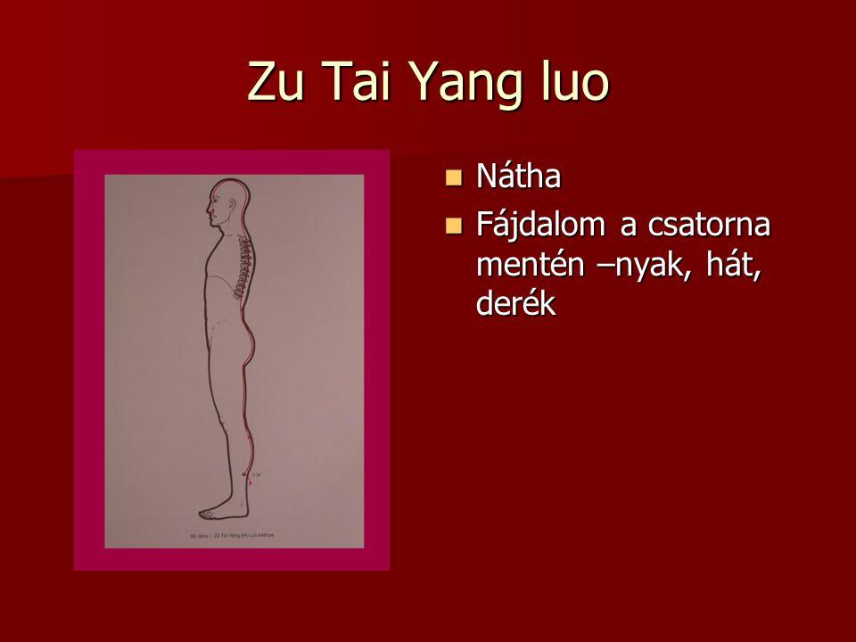 Zu Tai Yang luo Nátha Fájdalom a csatorna mentén –nyak, hát, derék