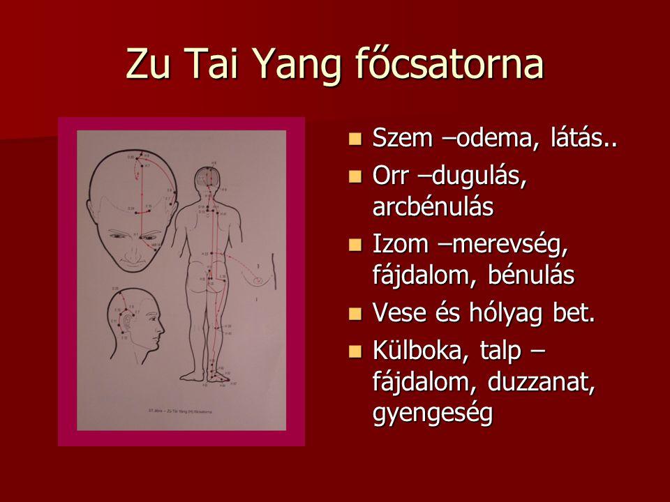 Zu Tai Yang főcsatorna Szem –odema, látás.. Orr –dugulás, arcbénulás