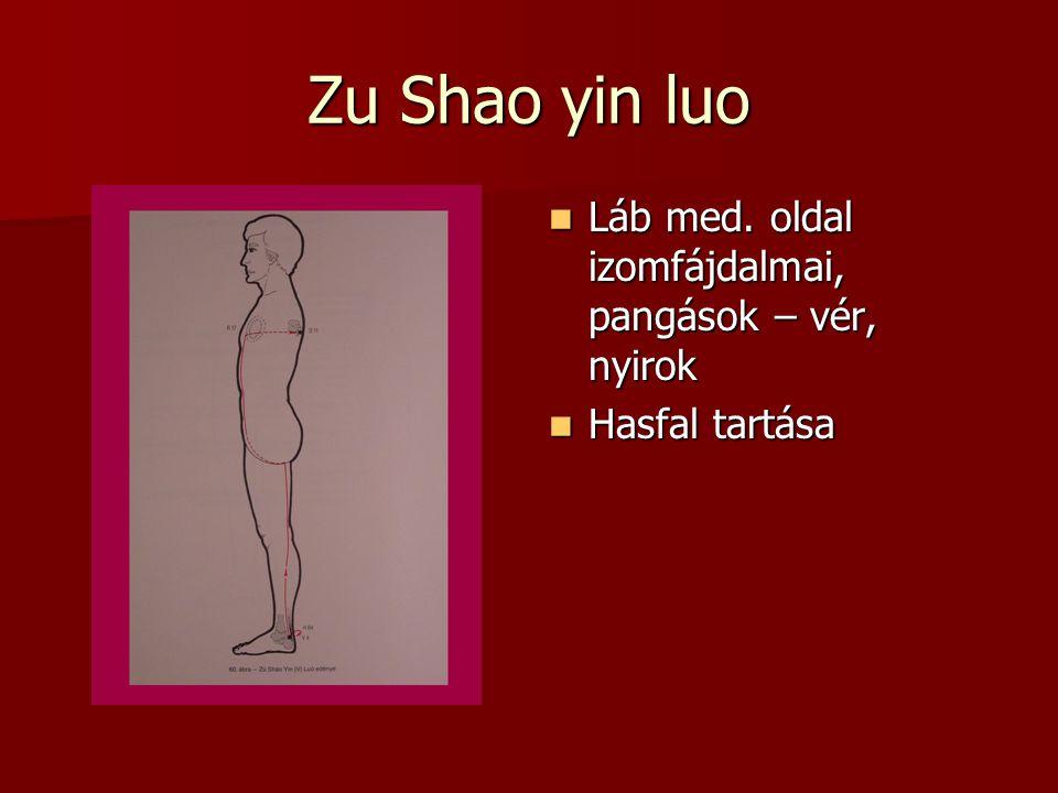 Zu Shao yin luo Láb med. oldal izomfájdalmai, pangások – vér, nyirok