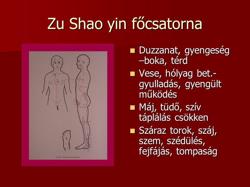 Zu Shao yin főcsatorna Duzzanat, gyengeség –boka, térd