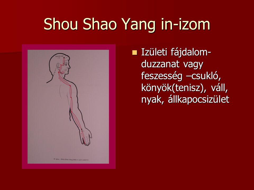 Shou Shao Yang in-izom Izületi fájdalom- duzzanat vagy feszesség –csukló, könyök(tenisz), váll, nyak, állkapocsizület.