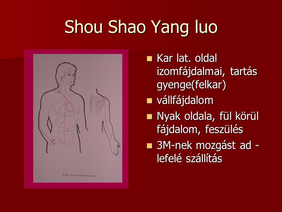 Shou Shao Yang luo Kar lat. oldal izomfájdalmai, tartás gyenge(felkar)