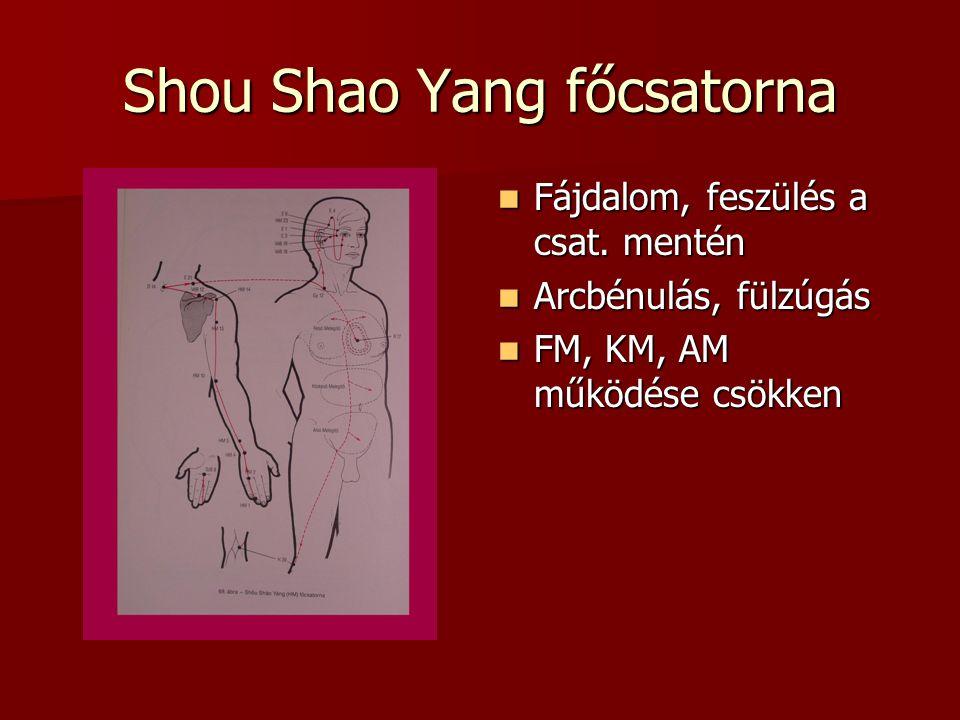 Shou Shao Yang főcsatorna