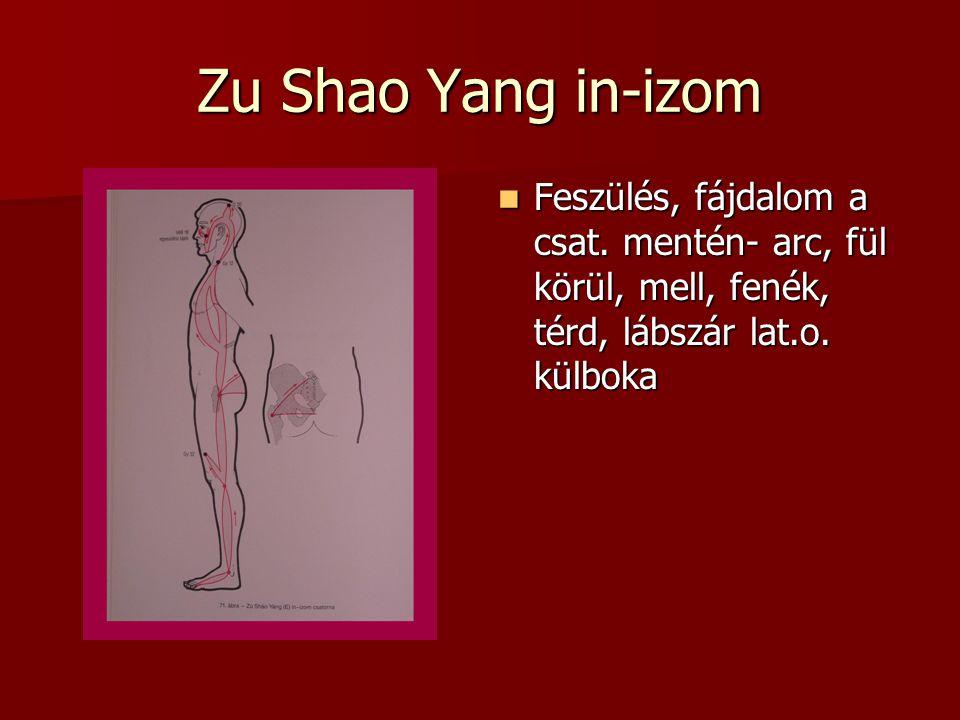 Zu Shao Yang in-izom Feszülés, fájdalom a csat.