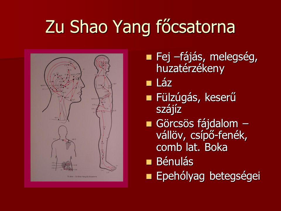 Zu Shao Yang főcsatorna