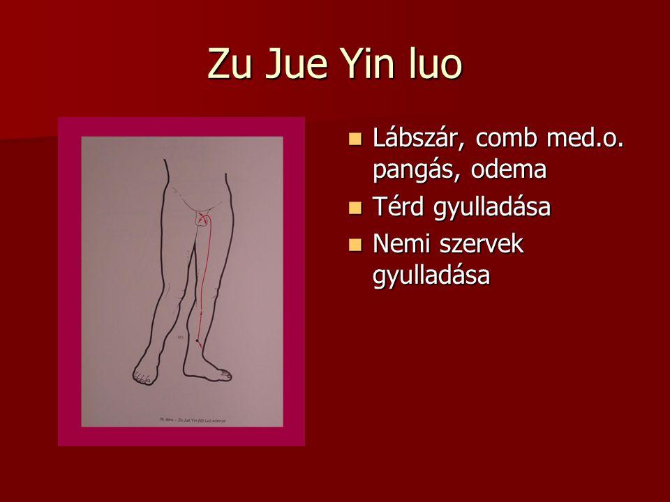 Zu Jue Yin luo Lábszár, comb med.o. pangás, odema Térd gyulladása