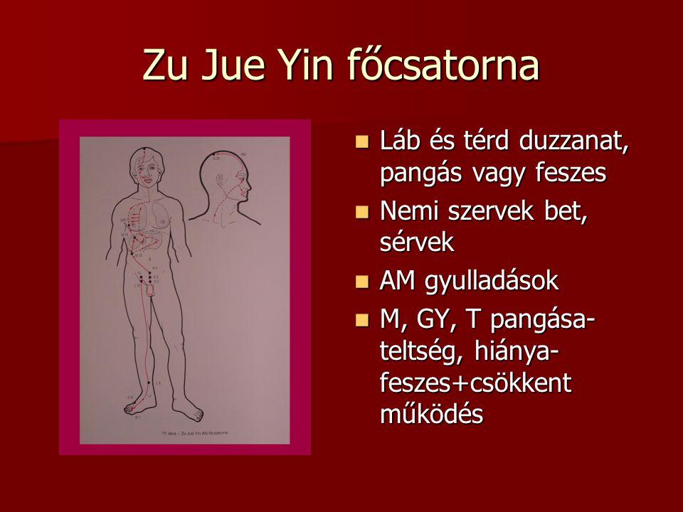 Zu Jue Yin főcsatorna Láb és térd duzzanat, pangás vagy feszes