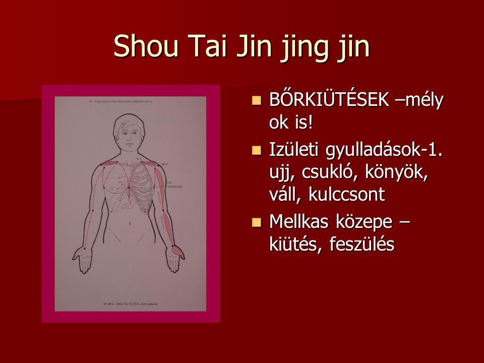 Shou Tai Jin jing jin BŐRKIÜTÉSEK –mély ok is!