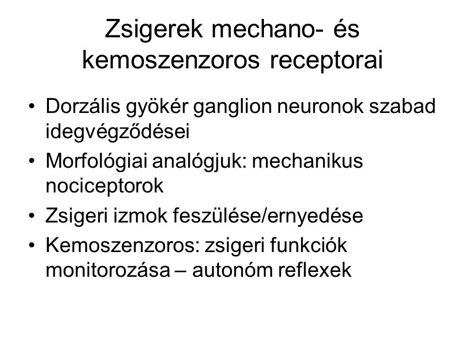 Zsigerek mechano- és kemoszenzoros receptorai