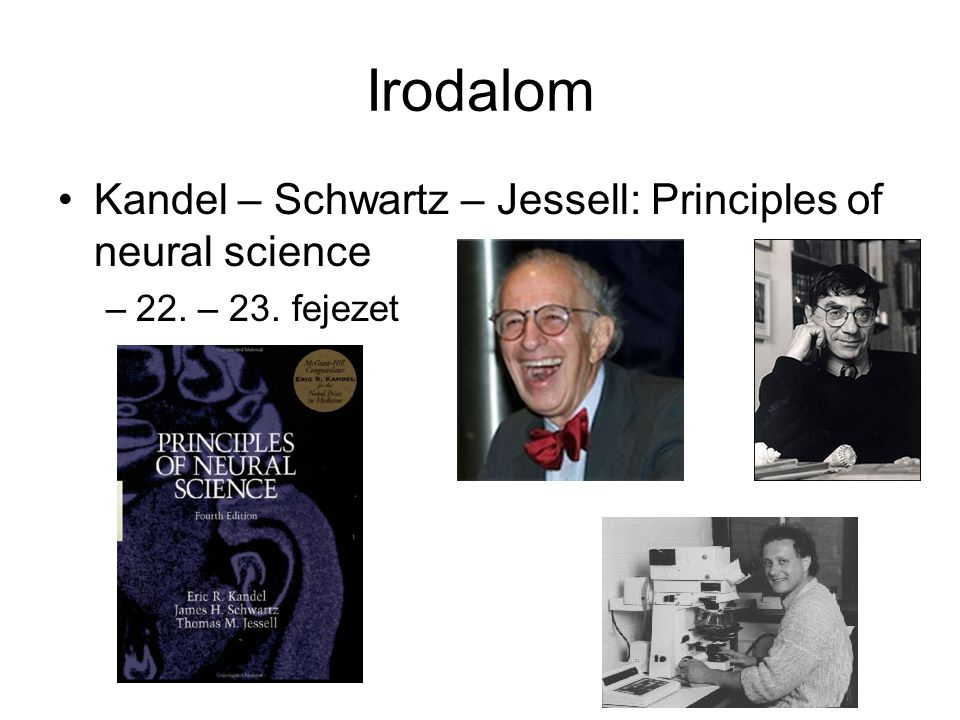 Irodalom Kandel – Schwartz – Jessell: Principles of neural science