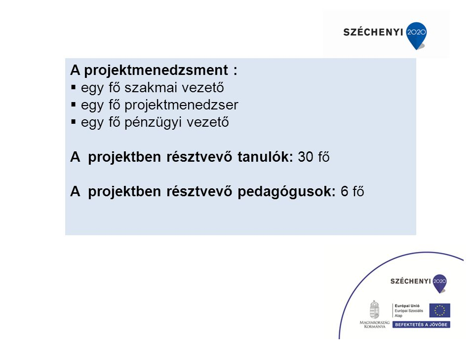 A projektmenedzsment :