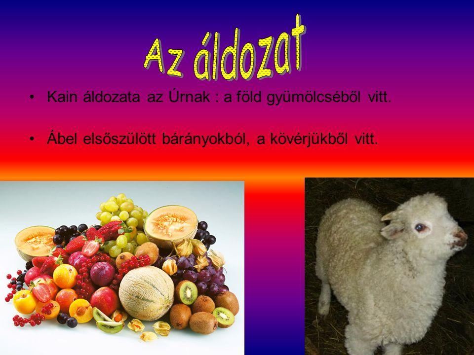 Az áldozat Kain áldozata az Úrnak : a föld gyümölcséből vitt.