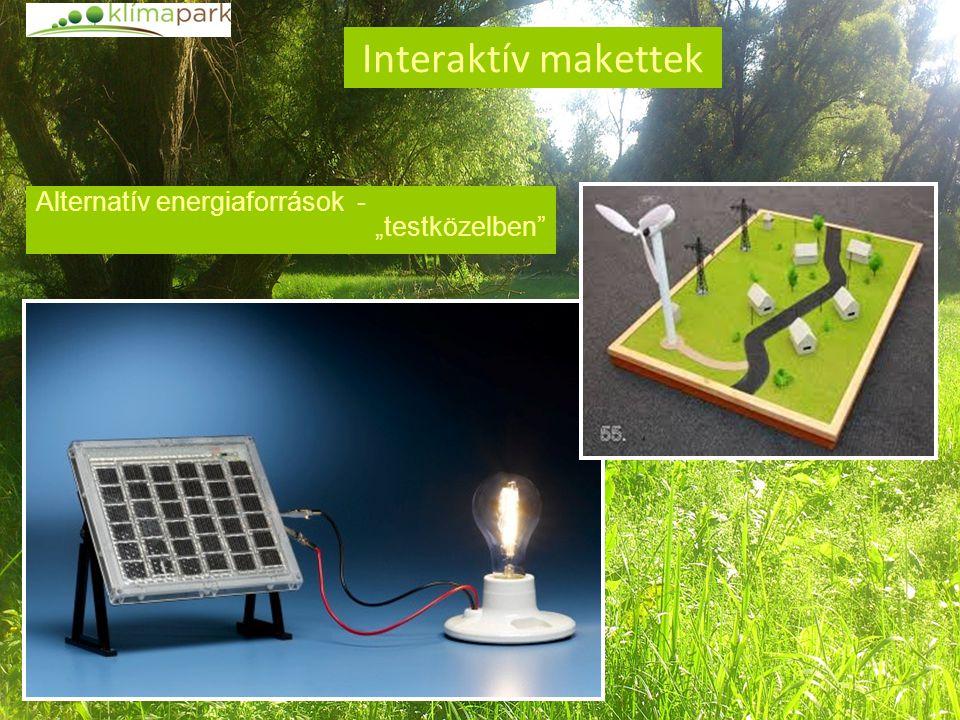 """Interaktív makettek Alternatív energiaforrások - """"testközelben"""