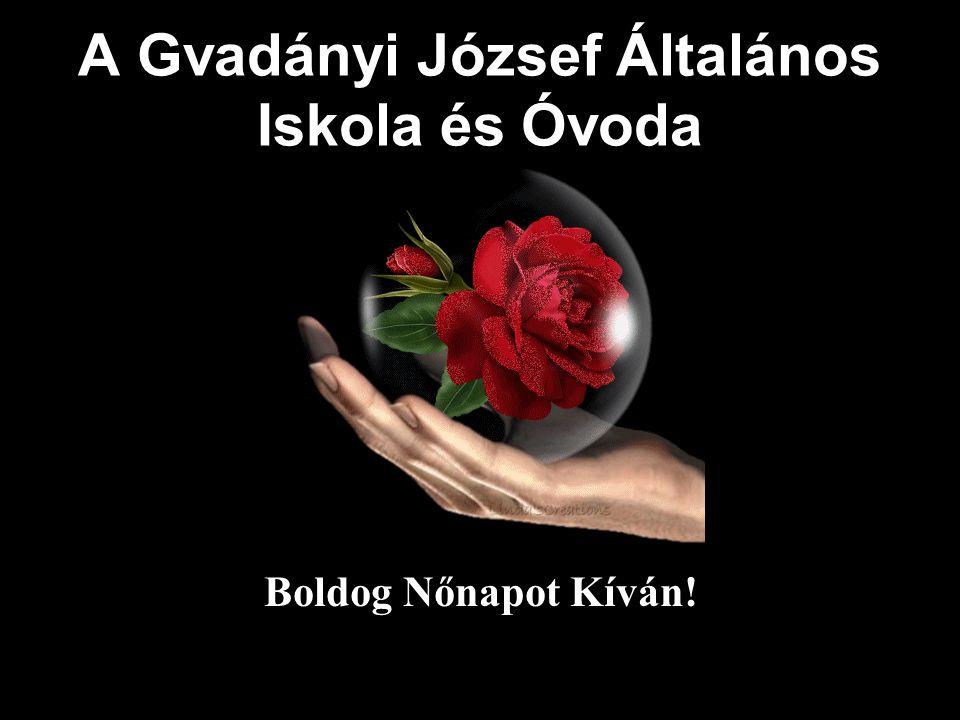 A Gvadányi József Általános Iskola és Óvoda