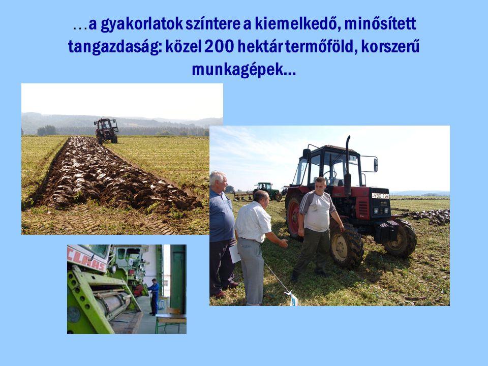 …a gyakorlatok színtere a kiemelkedő, minősített tangazdaság: közel 200 hektár termőföld, korszerű munkagépek…