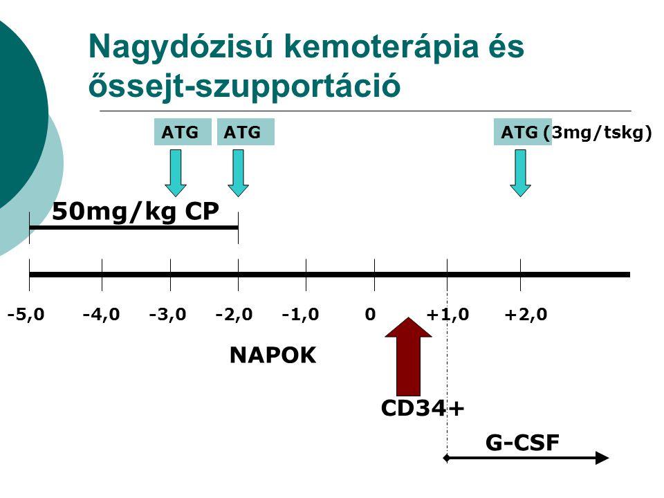 Nagydózisú kemoterápia és őssejt-szupportáció