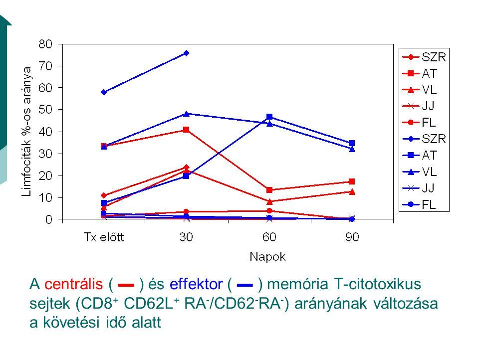 A centrális ( ▬ ) és effektor ( ▬ ) memória T-citotoxikus sejtek (CD8+ CD62L+ RA-/CD62-RA-) arányának változása a követési idő alatt