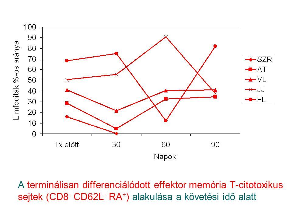A terminálisan differenciálódott effektor memória T-citotoxikus sejtek (CD8- CD62L- RA+) alakulása a követési idő alatt