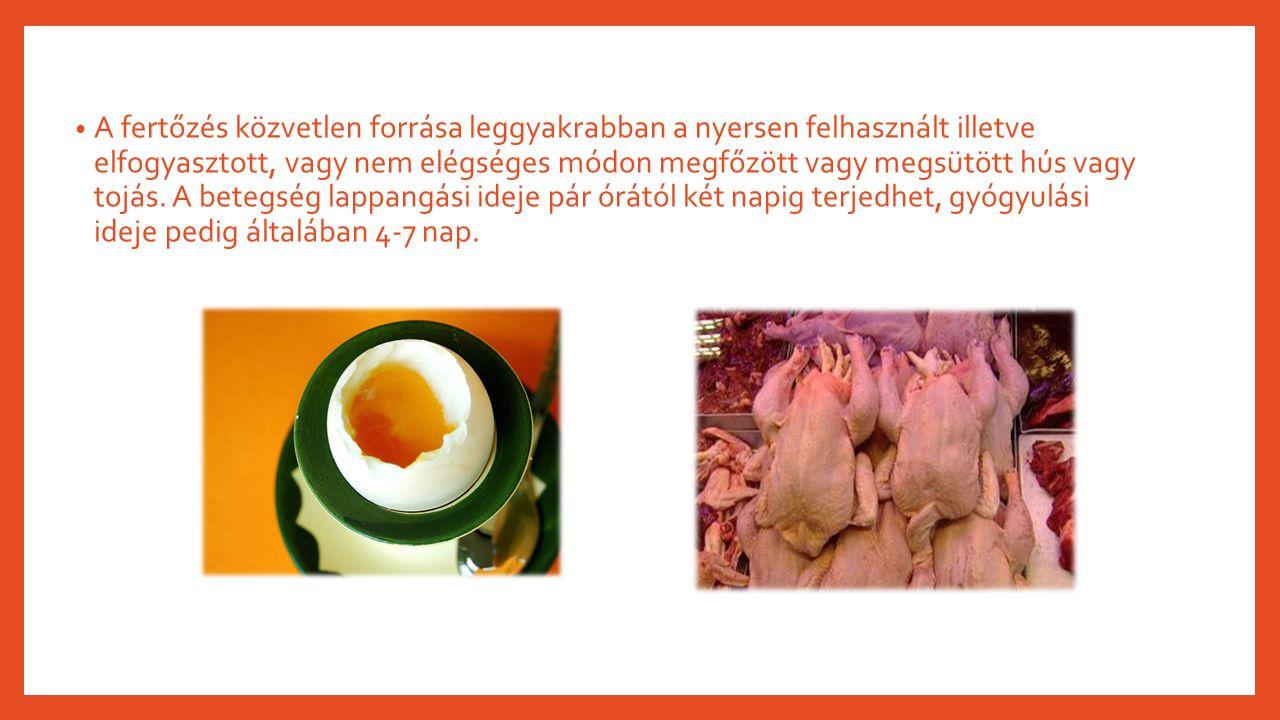 A fertőzés közvetlen forrása leggyakrabban a nyersen felhasznált illetve elfogyasztott, vagy nem elégséges módon megfőzött vagy megsütött hús vagy tojás.