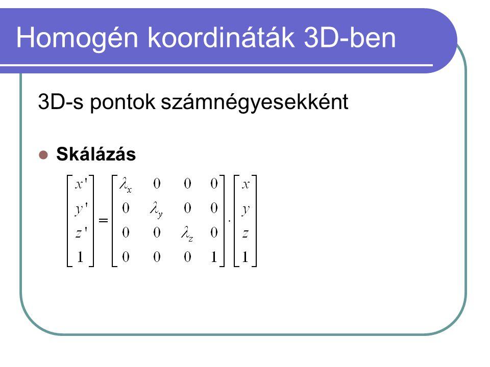 Homogén koordináták 3D-ben