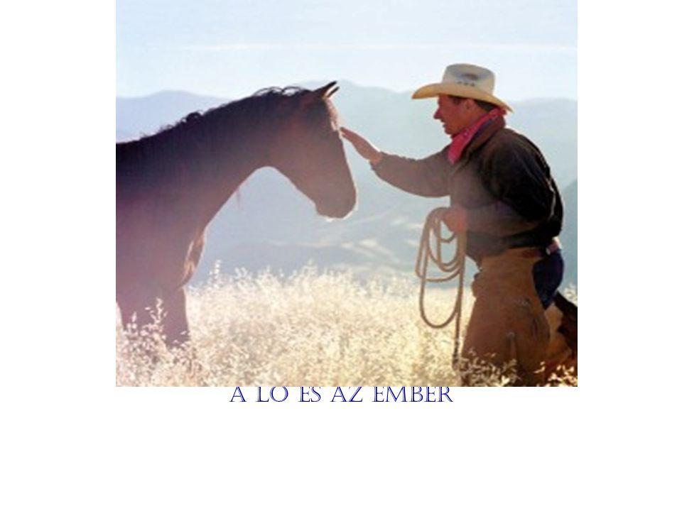A ló és az ember