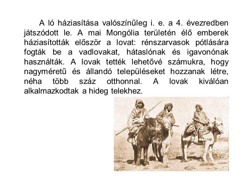 A ló háziasítása valószínűleg i. e. a 4. évezredben játszódott le