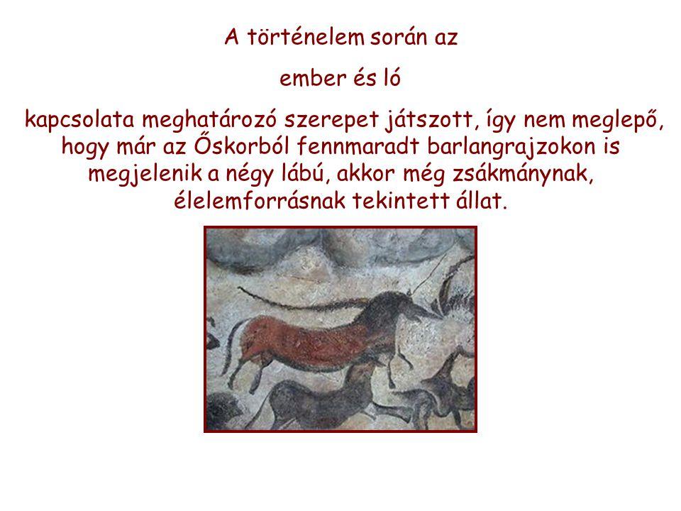 A történelem során az ember és ló.