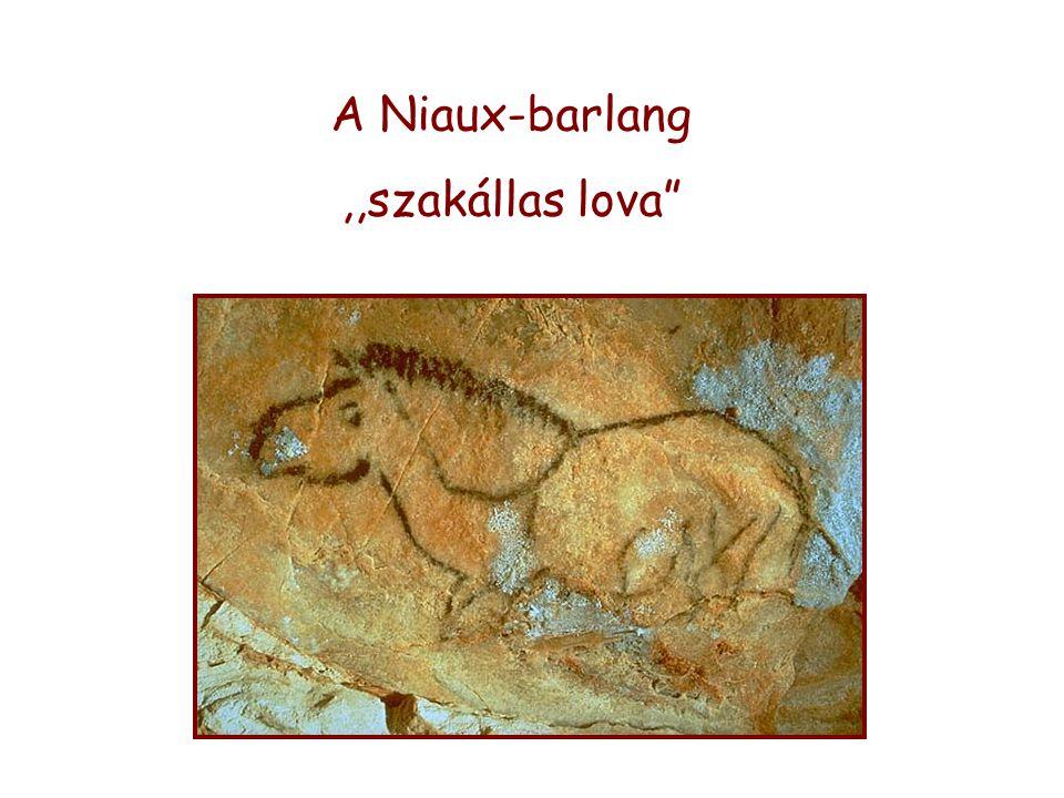 A Niaux-barlang ,,szakállas lova