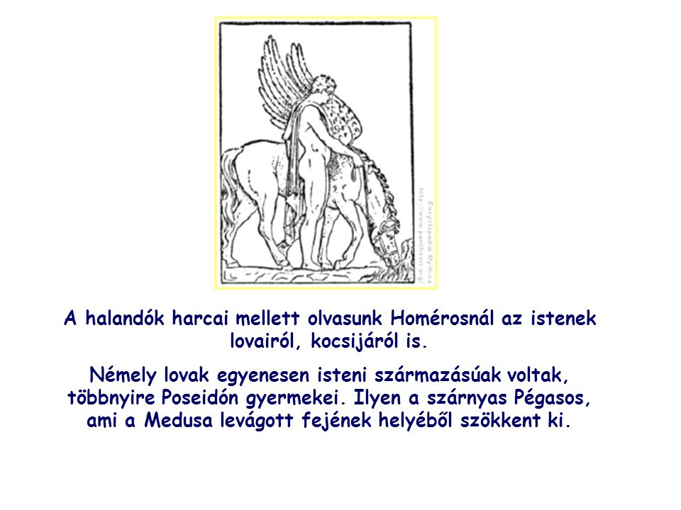 A halandók harcai mellett olvasunk Homérosnál az istenek lovairól, kocsijáról is.
