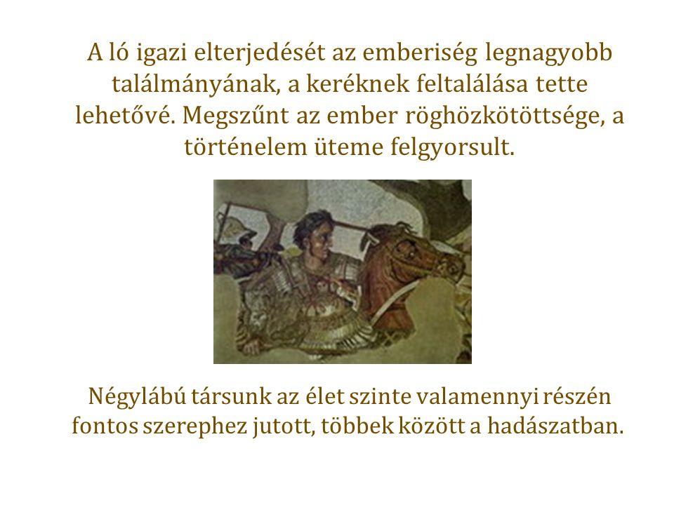 A ló igazi elterjedését az emberiség legnagyobb találmányának, a keréknek feltalálása tette lehetővé.