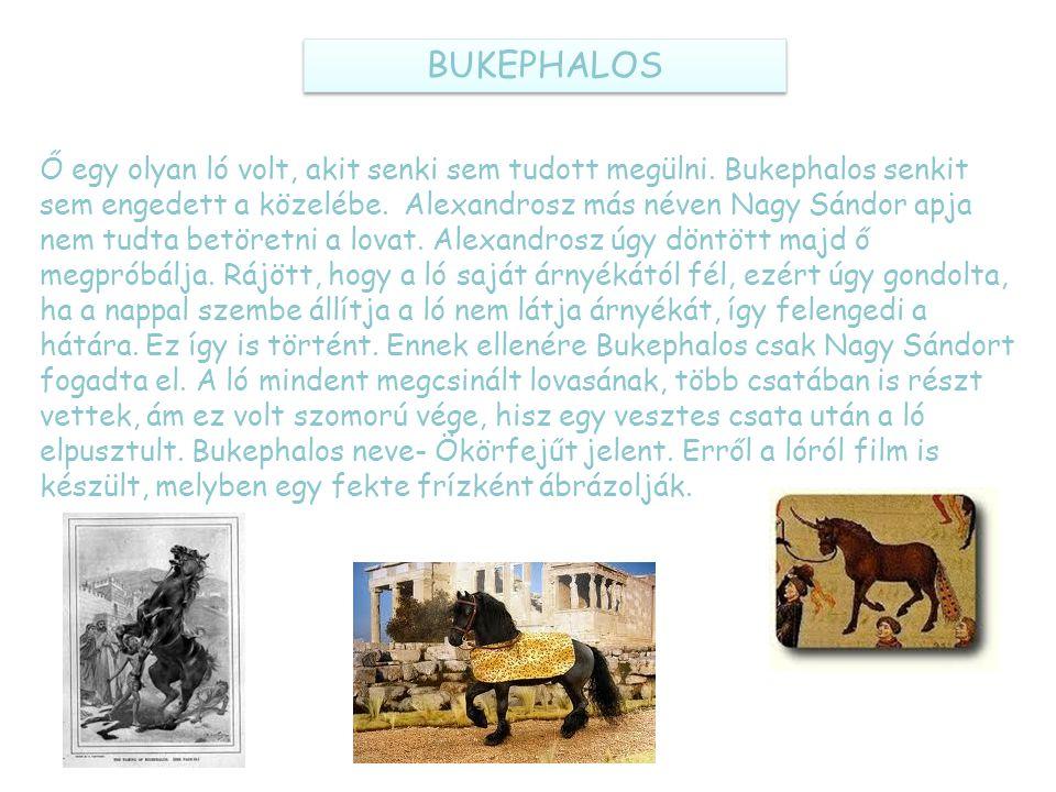 BUKEPHALOS