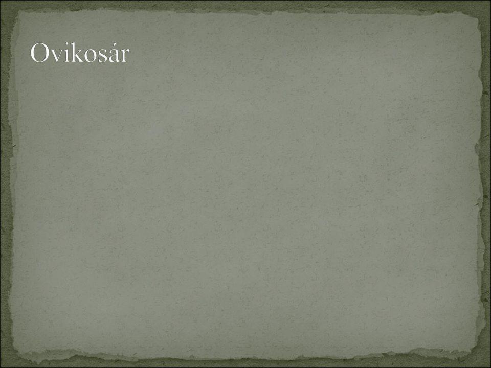 Ovikosár