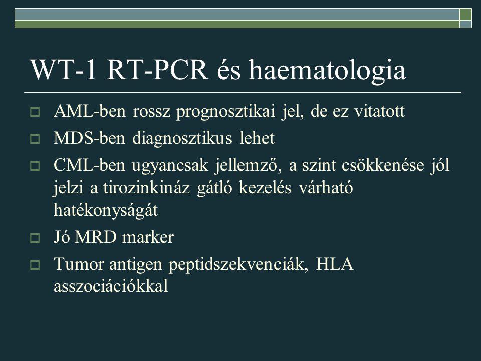 WT-1 RT-PCR és haematologia
