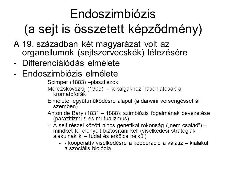 Endoszimbiózis (a sejt is összetett képződmény)