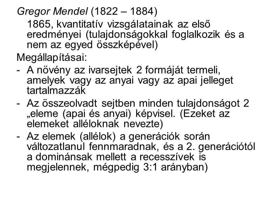 Gregor Mendel (1822 – 1884) 1865, kvantitatív vizsgálatainak az első eredményei (tulajdonságokkal foglalkozik és a nem az egyed összképével)