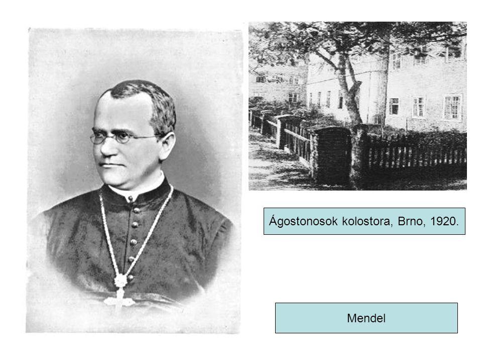 Ágostonosok kolostora, Brno, 1920.