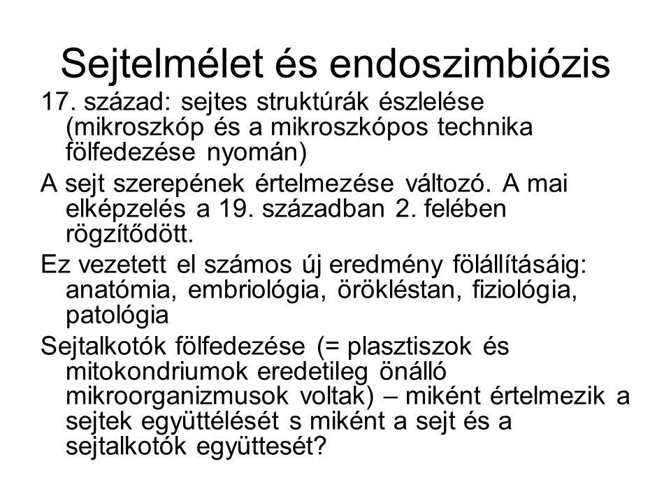 Sejtelmélet és endoszimbiózis