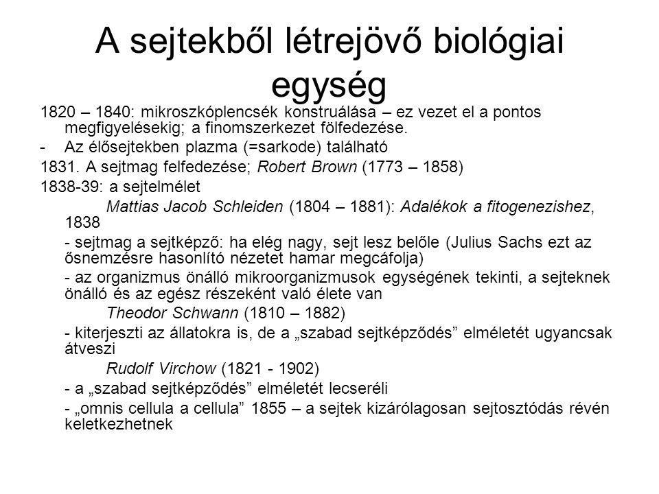 A sejtekből létrejövő biológiai egység
