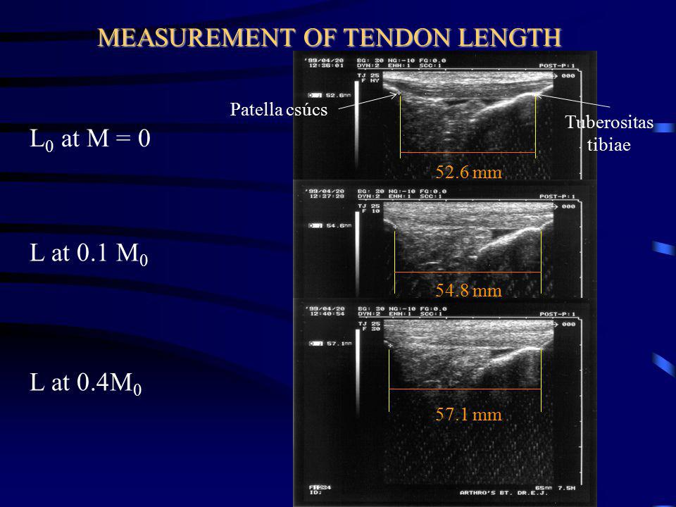MEASUREMENT OF TENDON LENGTH