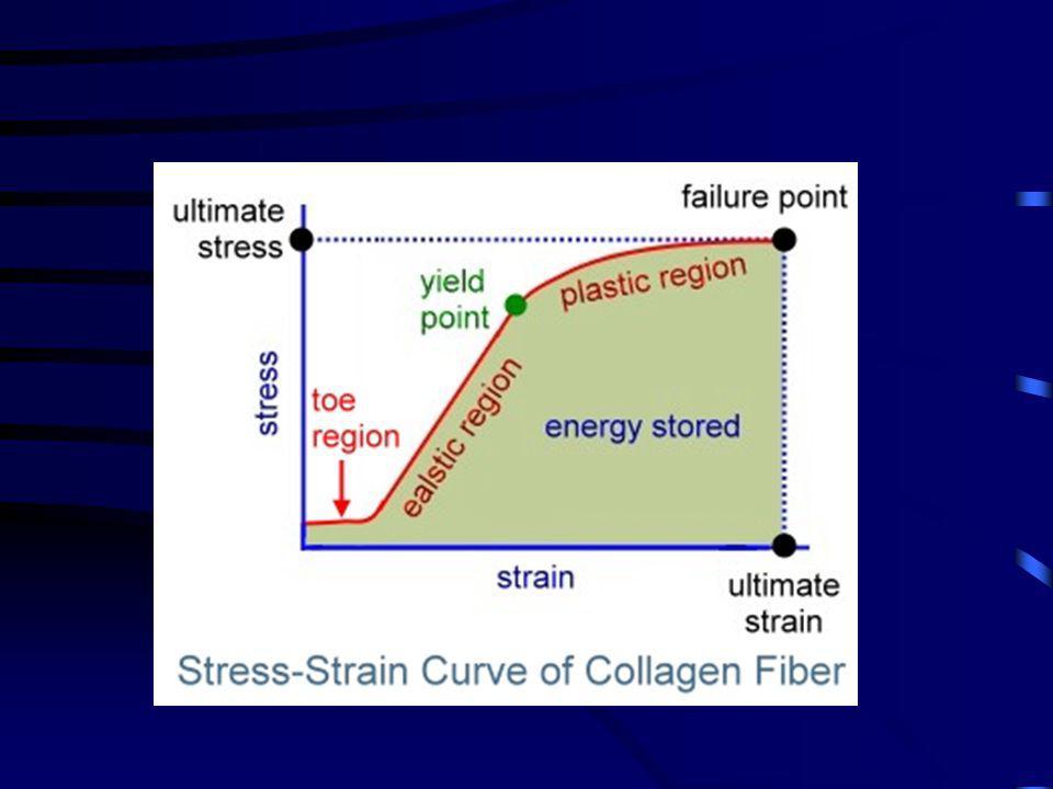 A dián egy kollagénrost stress-strain sematikus görbéjét látjuk, ami nagyon hasonló az egész ín görbéjéhez. A görbe alatti terület az ínban, szalagban tárolt elasztikus energiára jellemző, noha valójában az elasztikus energia az erő-megnyúlás görbe alatti területtel egyenlő.