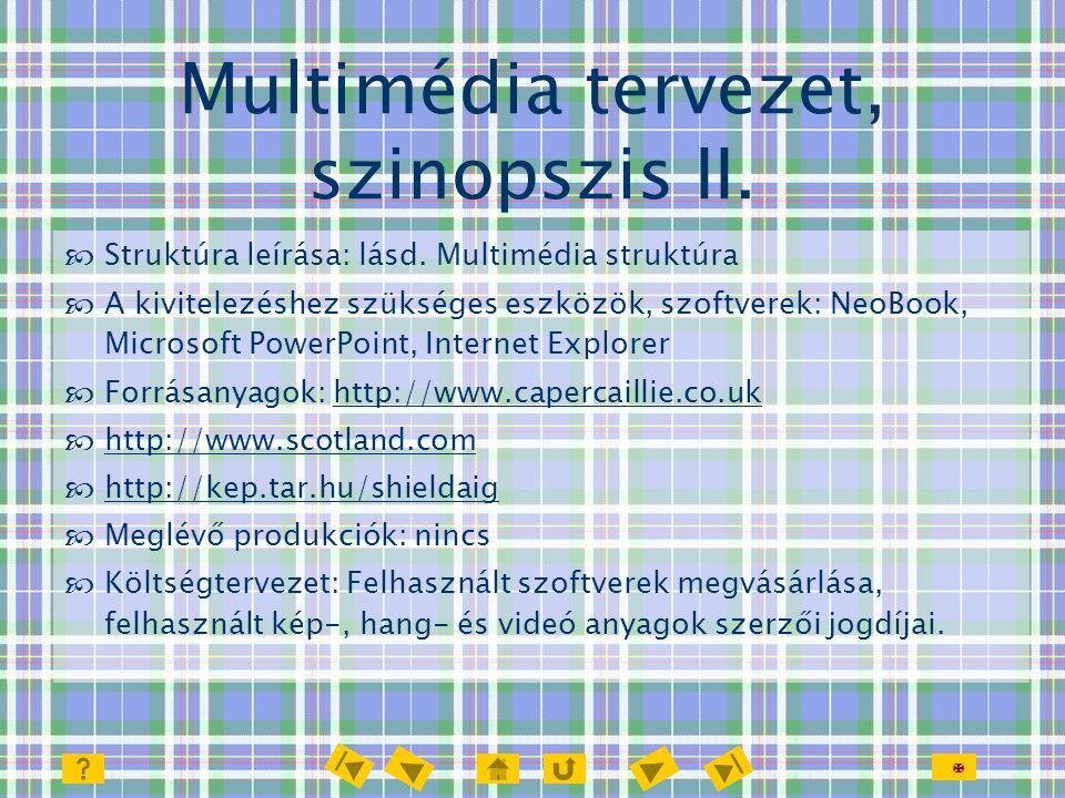 Multimédia tervezet, szinopszis II.