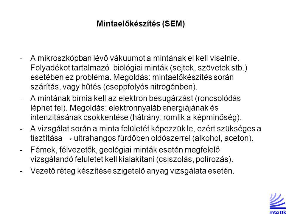 Mintaelőkészítés (SEM)