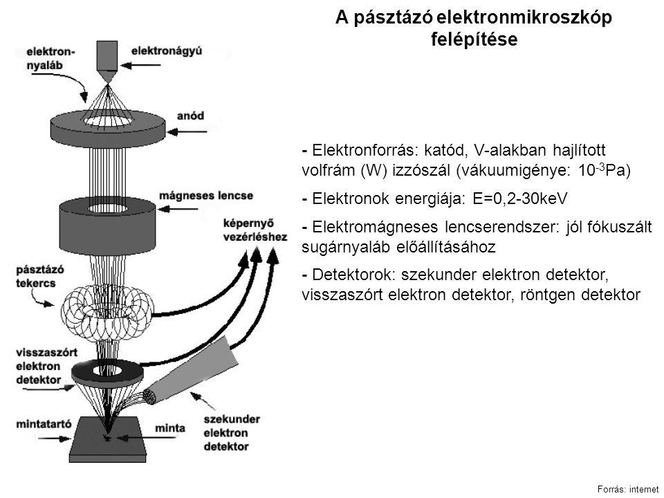 A pásztázó elektronmikroszkóp felépítése